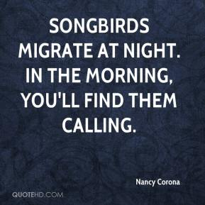 Nancy Corona  - Songbirds migrate at night. In the morning, you'll find them calling.