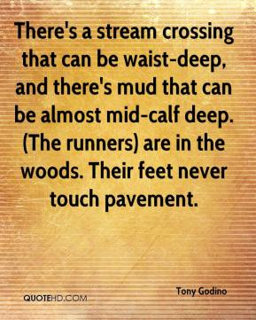 Tony Godino  - There's a stream crossing that can be waist-deep, and there's mud that can be almost mid-calf deep. (The runners) are in the woods. Their feet never touch pavement.