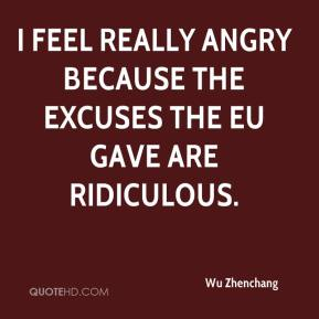 Wu Zhenchang  - I feel really angry because the excuses the EU gave are ridiculous.
