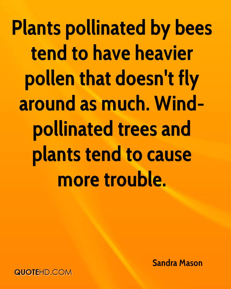 Plants pollinated by bees tend to have heavier pollen that doesn't fly around as much. Wind-pollinated trees and plants tend to cause more trouble.