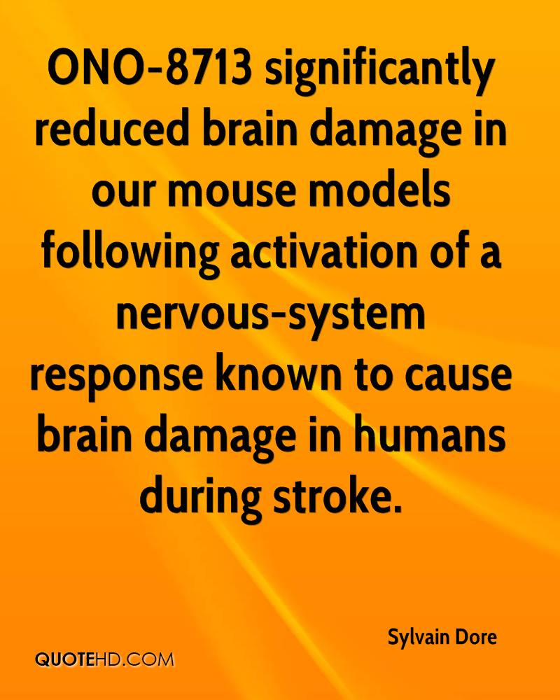 ONO-8713 significantly reduced brain damage in our mouse models following activation of a nervous-system response known to cause brain damage in humans during stroke.