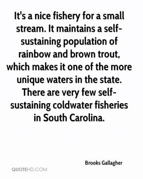 Brooks Gallagher - It's a nice fishery for a small stream. It maintains a self-sustaining population of rainbow and brown trout, which makes it one of the more unique waters in the state. There are very few self-sustaining coldwater fisheries in South Carolina.