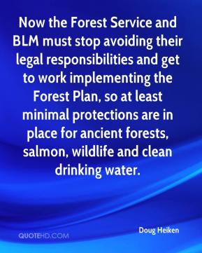 Doug Heiken - Now the Forest Service and BLM must stop avoiding their legal responsibilities and get to work implementing the Forest Plan, so at least minimal protections are in place for ancient forests, salmon, wildlife and clean drinking water.
