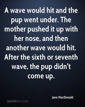 A wave would hit and the pup went under. The mother pushed it up with her nose, and then another wave would hit. After the sixth or seventh wave, the pup didn't come up.