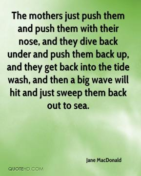 The mothers just push them and push them with their nose, and they dive back under and push them back up, and they get back into the tide wash, and then a big wave will hit and just sweep them back out to sea.