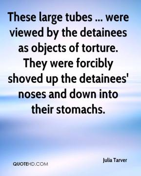Julia Tarver  - These large tubes ... were viewed by the detainees as objects of torture. They were forcibly shoved up the detainees' noses and down into their stomachs.