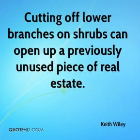 Keith Wiley  - Cutting off lower branches on shrubs can open up a previously unused piece of real estate.
