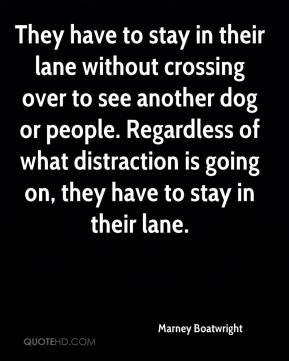 Marney Boatwright  - They have to stay in their lane without crossing over to see another dog or people. Regardless of what distraction is going on, they have to stay in their lane.