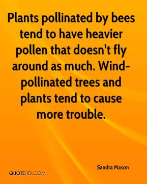 Sandra Mason  - Plants pollinated by bees tend to have heavier pollen that doesn't fly around as much. Wind-pollinated trees and plants tend to cause more trouble.