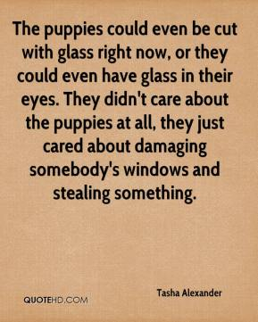 Tasha Alexander  - The puppies could even be cut with glass right now, or they could even have glass in their eyes. They didn't care about the puppies at all, they just cared about damaging somebody's windows and stealing something.