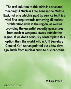 William Peden  - The real solution to this crisis is a true and meaningful Nuclear Free Zone in the Middle East, not one which is paid lip service to. It is a vital first step towards removing all nuclear proliferation risks in the region, as well as providing the essential security guarantees from nuclear weapons states outside the region. If we don't seriously contemplate this option then the world will, as UN Secretary General Kofi Annan pointed out a few days ago, lurch from nuclear crisis to nuclear crisis.