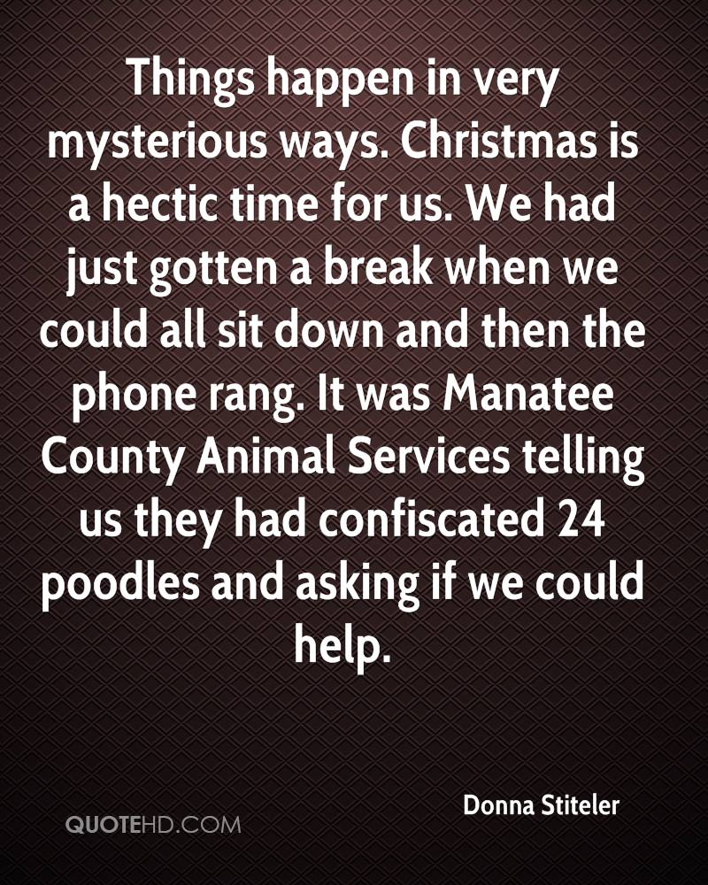 Things happen in very mysterious ways. Christmas is a hectic time for us. We had just gotten a break when we could all sit down and then the phone rang. It was Manatee County Animal Services telling us they had confiscated 24 poodles and asking if we could help.