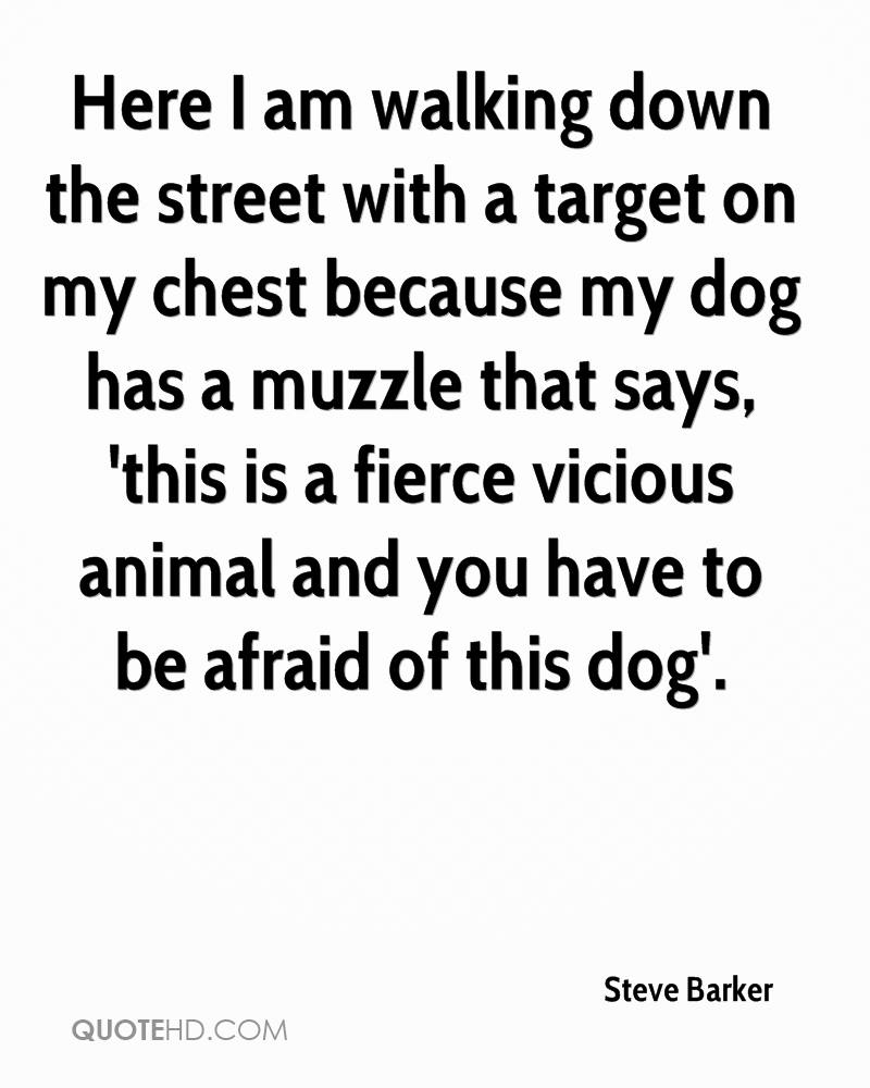 Here I am walking down the street with a target on my chest because my dog has a muzzle that says, 'this is a fierce vicious animal and you have to be afraid of this dog'.