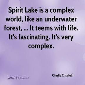 Spirit Lake is a complex world, like an underwater forest, ... It teems with life. It's fascinating. It's very complex.