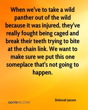 Deborah Jansen - When we've to take a wild panther out of the wild because it was injured, they've really fought being caged and break their teeth trying to bite at the chain link. We want to make sure we put this one someplace that's not going to happen.