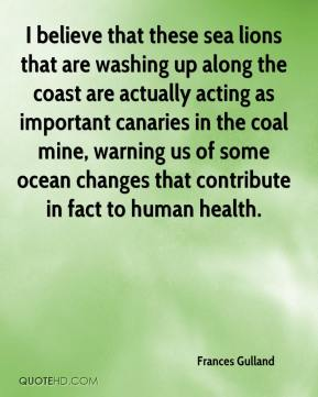 Frances Gulland - I believe that these sea lions that are washing up along the coast are actually acting as important canaries in the coal mine, warning us of some ocean changes that contribute in fact to human health.