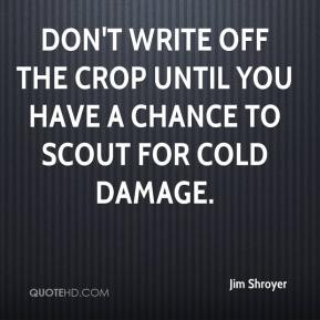 Jim Shroyer  - Don't write off the crop until you have a chance to scout for cold damage.