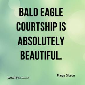 Marge Gibson  - Bald eagle courtship is absolutely beautiful.