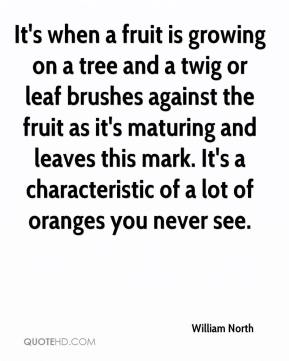 William North  - It's when a fruit is growing on a tree and a twig or leaf brushes against the fruit as it's maturing and leaves this mark. It's a characteristic of a lot of oranges you never see.