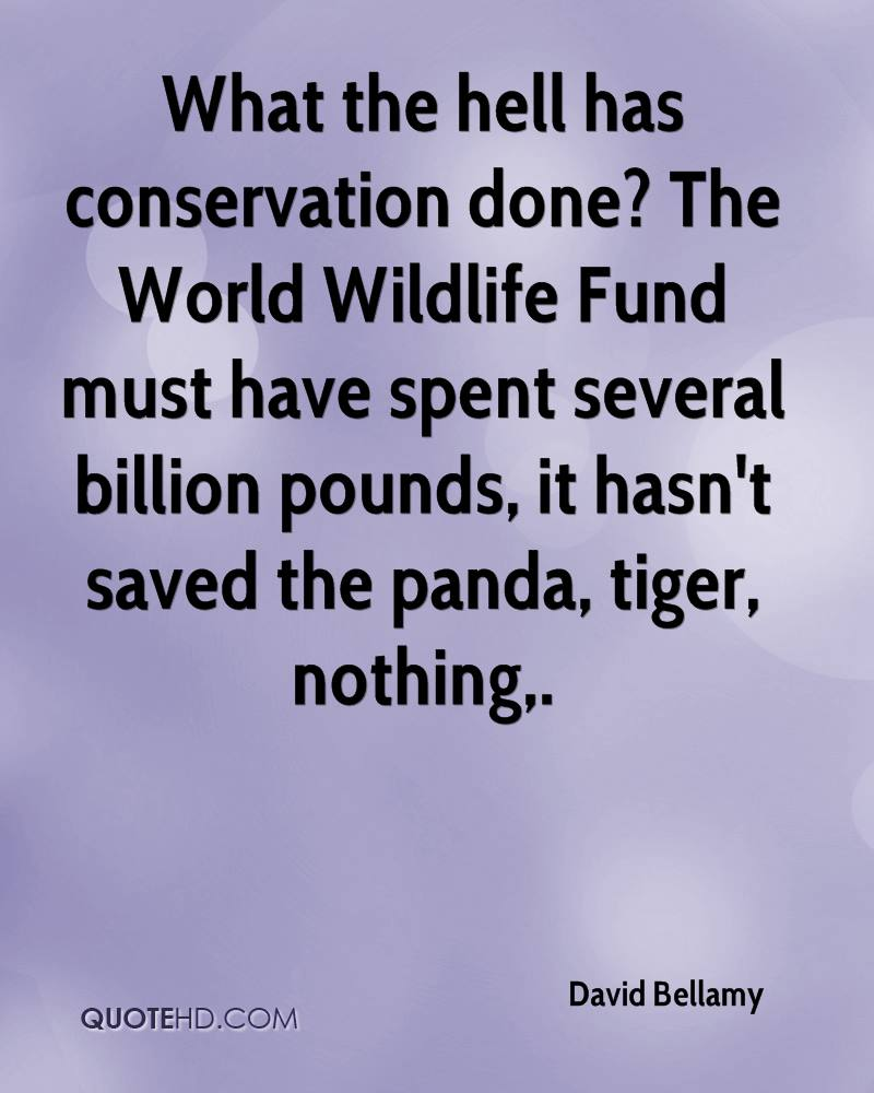 What the hell has conservation done? The World Wildlife Fund must have spent several billion pounds, it hasn't saved the panda, tiger, nothing.