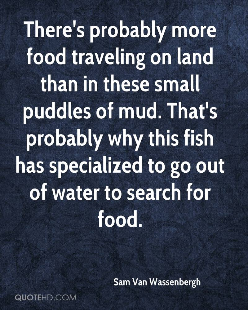 There's probably more food traveling on land than in these small puddles of mud. That's probably why this fish has specialized to go out of water to search for food.