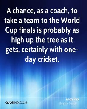 A chance, as a coach, to take a team to the World Cup finals is probably as high up the tree as it gets, certainly with one-day cricket.