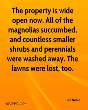 Bill Noble - The property is wide open now. All of the magnolias succumbed, and countless smaller shrubs and perennials were washed away. The lawns were lost, too.