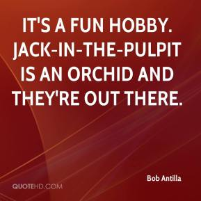 Bob Antilla - It's a fun hobby. Jack-in-the-Pulpit is an orchid and they're out there.