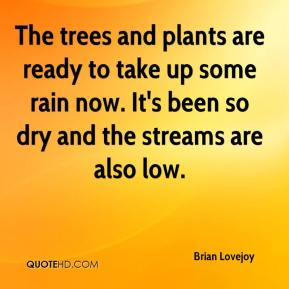 Brian Lovejoy - The trees and plants are ready to take up some rain now. It's been so dry and the streams are also low.