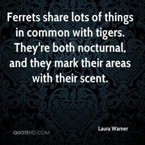 Laura Warner  - Ferrets share lots of things in common with tigers. They're both nocturnal, and they mark their areas with their scent.