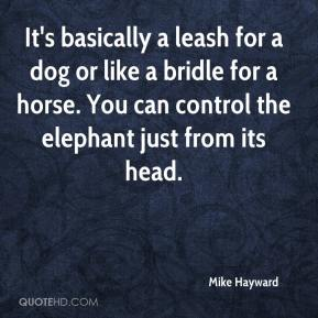 Mike Hayward  - It's basically a leash for a dog or like a bridle for a horse. You can control the elephant just from its head.