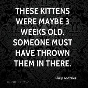 Philip Gonzalez  - These kittens were maybe 3 weeks old. Someone must have thrown them in there.