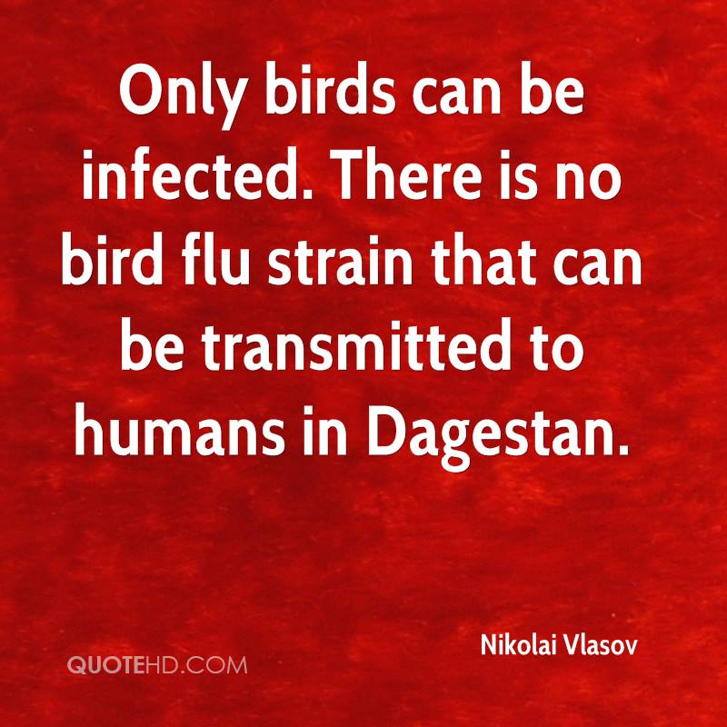 Only birds can be infected. There is no bird flu strain that can be transmitted to humans in Dagestan.