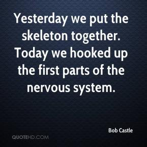 Bob Castle - Yesterday we put the skeleton together. Today we hooked up the first parts of the nervous system.