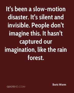 It's been a slow-motion disaster. It's silent and invisible. People don't imagine this. It hasn't captured our imagination, like the rain forest.