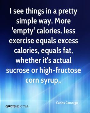 Carlos Camargo - I see things in a pretty simple way. More 'empty' calories, less exercise equals excess calories, equals fat, whether it's actual sucrose or high-fructose corn syrup.