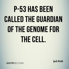 P-53 has been called the guardian of the genome for the cell.