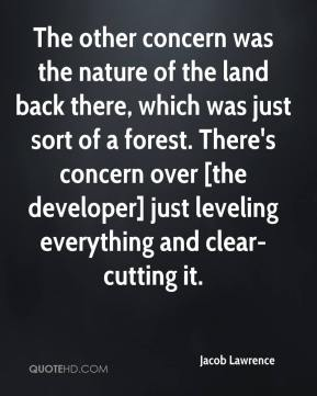 The other concern was the nature of the land back there, which was just sort of a forest. There's concern over [the developer] just leveling everything and clear-cutting it.