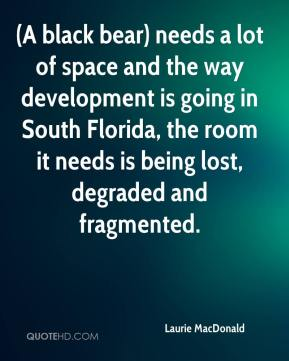 Laurie MacDonald  - (A black bear) needs a lot of space and the way development is going in South Florida, the room it needs is being lost, degraded and fragmented.