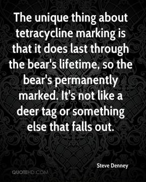 Steve Denney  - The unique thing about tetracycline marking is that it does last through the bear's lifetime, so the bear's permanently marked. It's not like a deer tag or something else that falls out.