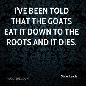 Steve Leach  - I've been told that the goats eat it down to the roots and it dies.