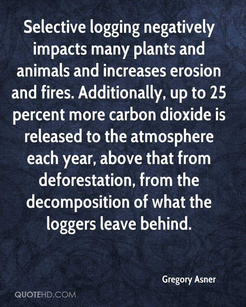 Selective logging negatively impacts many plants and animals and increases erosion and fires. Additionally, up to 25 percent more carbon dioxide is released to the atmosphere each year, above that from deforestation, from the decomposition of what the loggers leave behind.