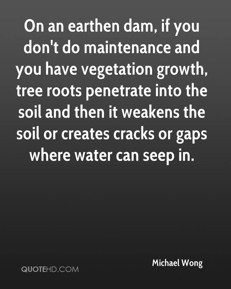 On an earthen dam, if you don't do maintenance and you have vegetation growth, tree roots penetrate into the soil and then it weakens the soil or creates cracks or gaps where water can seep in.