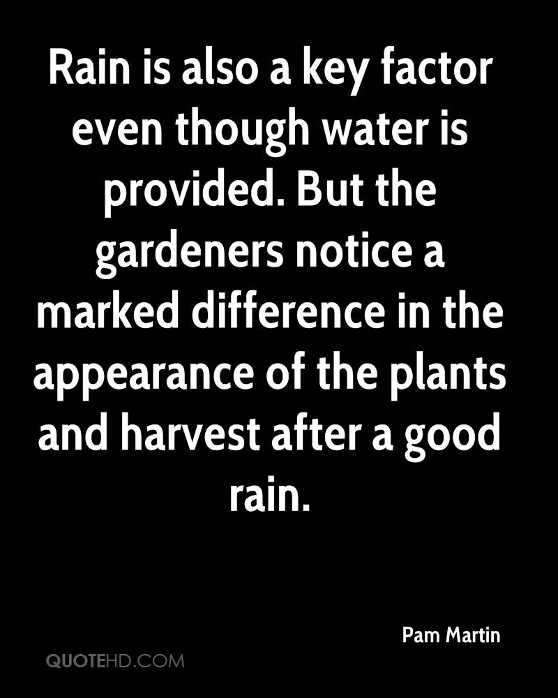 Rain is also a key factor even though water is provided. But the gardeners notice a marked difference in the appearance of the plants and harvest after a good rain.