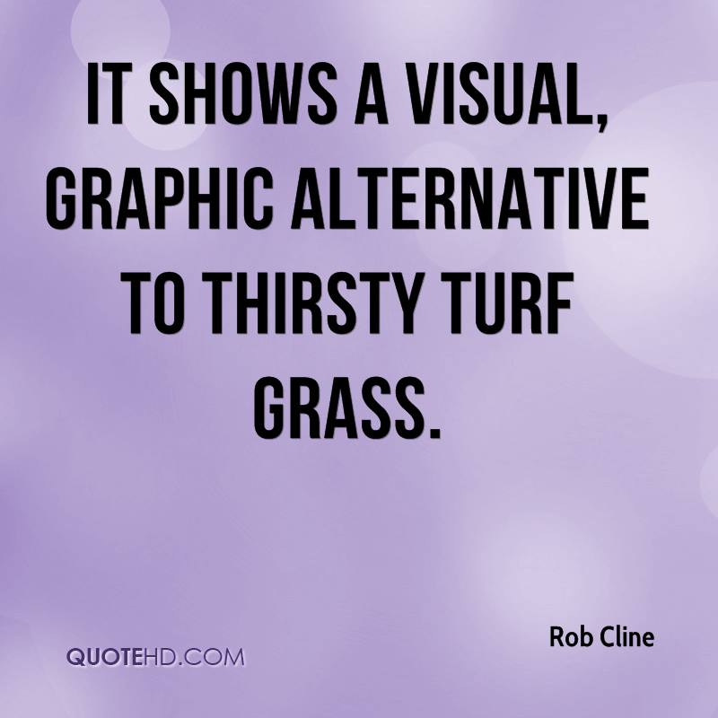 It shows a visual, graphic alternative to thirsty turf grass.