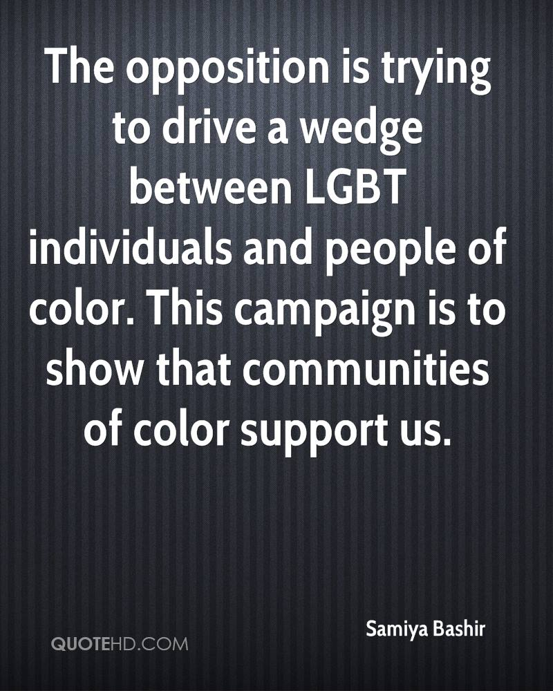 The opposition is trying to drive a wedge between LGBT individuals and people of color. This campaign is to show that communities of color support us.