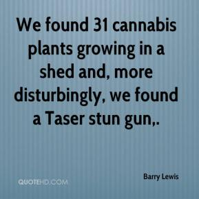 Barry Lewis - We found 31 cannabis plants growing in a shed and, more disturbingly, we found a Taser stun gun.