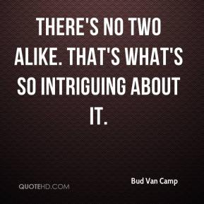 Bud Van Camp - There's no two alike. That's what's so intriguing about it.