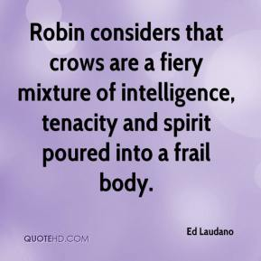Ed Laudano - Robin considers that crows are a fiery mixture of intelligence, tenacity and spirit poured into a frail body.