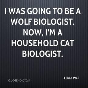 Elaine Weil - I was going to be a wolf biologist. Now, I'm a household cat biologist.